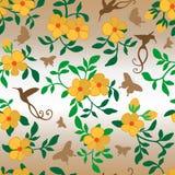 Borboletas dos colibris das flores sem emenda ilustração do vetor