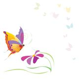 Borboletas e flor fotografia de stock royalty free