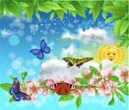 Borboletas na primavera que voam no ar Imagens de Stock