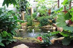 Borboletas no jardim das borboletas Fotografia de Stock Royalty Free
