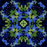 borboletas Teste padrão calidoscópico sem emenda Fotografia de Stock