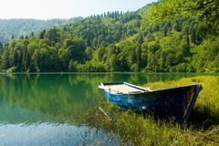 Borcka Black Lake. You can see the every tone of the green color.here is in Artvin/TURKEY Royalty Free Stock Images