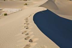 Bord de dune de sable, Death Valley Photos stock