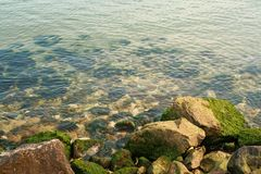 Bord de la mer à Varna Image stock