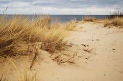 Bord de la mer baltique Photo libre de droits