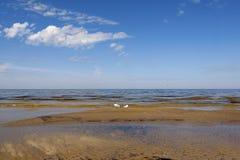 Bord de la mer baltique image libre de droits