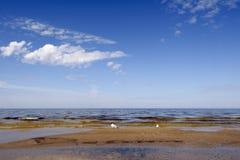 Bord de la mer baltique Images libres de droits