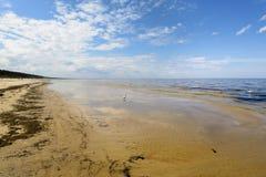 Bord de la mer baltique Photographie stock libre de droits