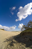 Bord de la mer Baltique - une dune Photos stock