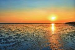 Bord de la mer et soleil Images stock