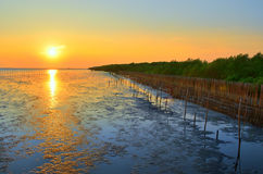 Bord de la mer et soleil Photo stock