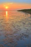 Bord de la mer et soleil Photographie stock libre de droits