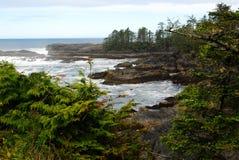 Bord de la mer dans le pays de la côte Pacifique Photographie stock