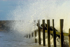 Bord de la mer de la Norfolk Images stock