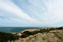 Bord de la mer herbeux avec le ciel nuageux Photo stock