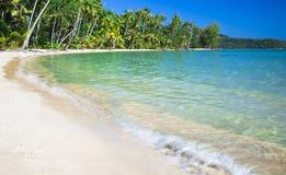 Bord de la mer tropical photographie stock libre de droits