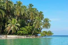 Bord de la mer tropical luxuriant Panama Amérique Centrale photographie stock libre de droits