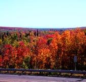 Bord de la route Autumn Colors - réserve forestière supérieure Photographie stock