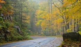 Bord de la route jaune d'automne scénique Images libres de droits