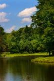Bord de lac Image libre de droits