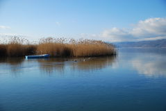Bord de lac de silence Photographie stock libre de droits