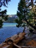 Bord de lac scénique Image libre de droits