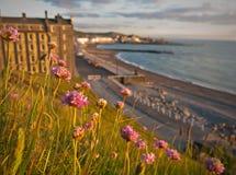 Bord de mer d'Aberystwyth en été photographie stock