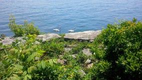 Bord de mer de Mississauga Photos stock