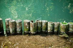 Bord de rivière Photos libres de droits