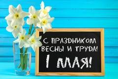 Bord met de tekst in Rus: met de vakantie van de lente en arbeid, 1 Mei Witte bloemen van gele narcissen op een blauwe houten tab royalty-vrije stock afbeeldingen