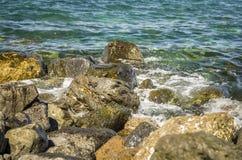 Bord pierreux d'océan avec des crabes photo stock