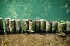 Bord van rivier Royalty-vrije Stock Foto's