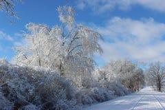 Borda da estrada branca do inverno Imagem de Stock Royalty Free