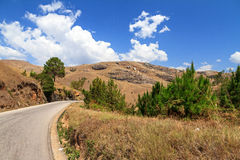 Borda da estrada Madagáscar Fotografia de Stock