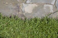 Borda da grama do Flagstone fotos de stock