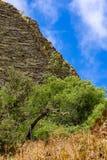 Borda da montanha na frente de um céu azul, de uma grama e de umas árvores verdes no primeiro plano fotografia de stock