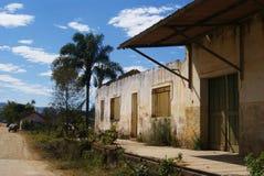 Borda a Dinamarca Mata Minas Gerais Brasil Fotos de Stock