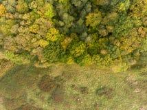 Borda do outono da opinião aérea da floresta foto de stock