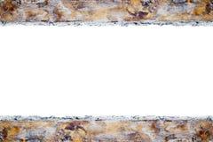 Borda dourada, solhas da pintura ilustração do vetor