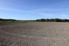 A borda próxima de um campo cultivado em um dia de mola foto de stock royalty free