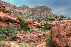 Borda-Toroweep nacional do parque-n da garganta AZ-grande Foto de Stock Royalty Free