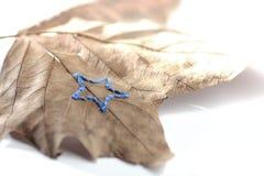 bordado de la mano en la hoja del sicómoro delante del fondo blanco - tema de la estrella - decoración del otoño/del invierno Fotos de archivo libres de regalías