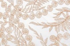 Bordado del primer con adornos de las plantas del cordón beige en los vagos blancos Imagen de archivo