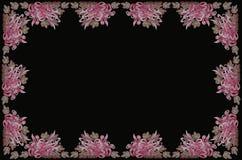 Bordduk med aster på svarta bakgrunder Royaltyfri Foto