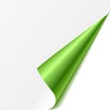 Borde dado vuelta. Verde. Vector. stock de ilustración