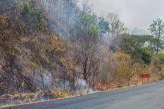 Borde de la carretera de los incendios forestales Foto de archivo libre de regalías