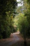 Borde de la carretera hermoso del país imagen de archivo
