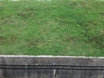Borde de la hierba Fotos de archivo