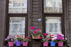 Borde de la ventana de la casa con las flores fotos de archivo