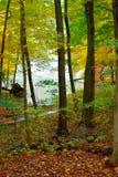 Borde de las aguas Foto de archivo libre de regalías